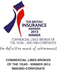 British insurance award winner 2013