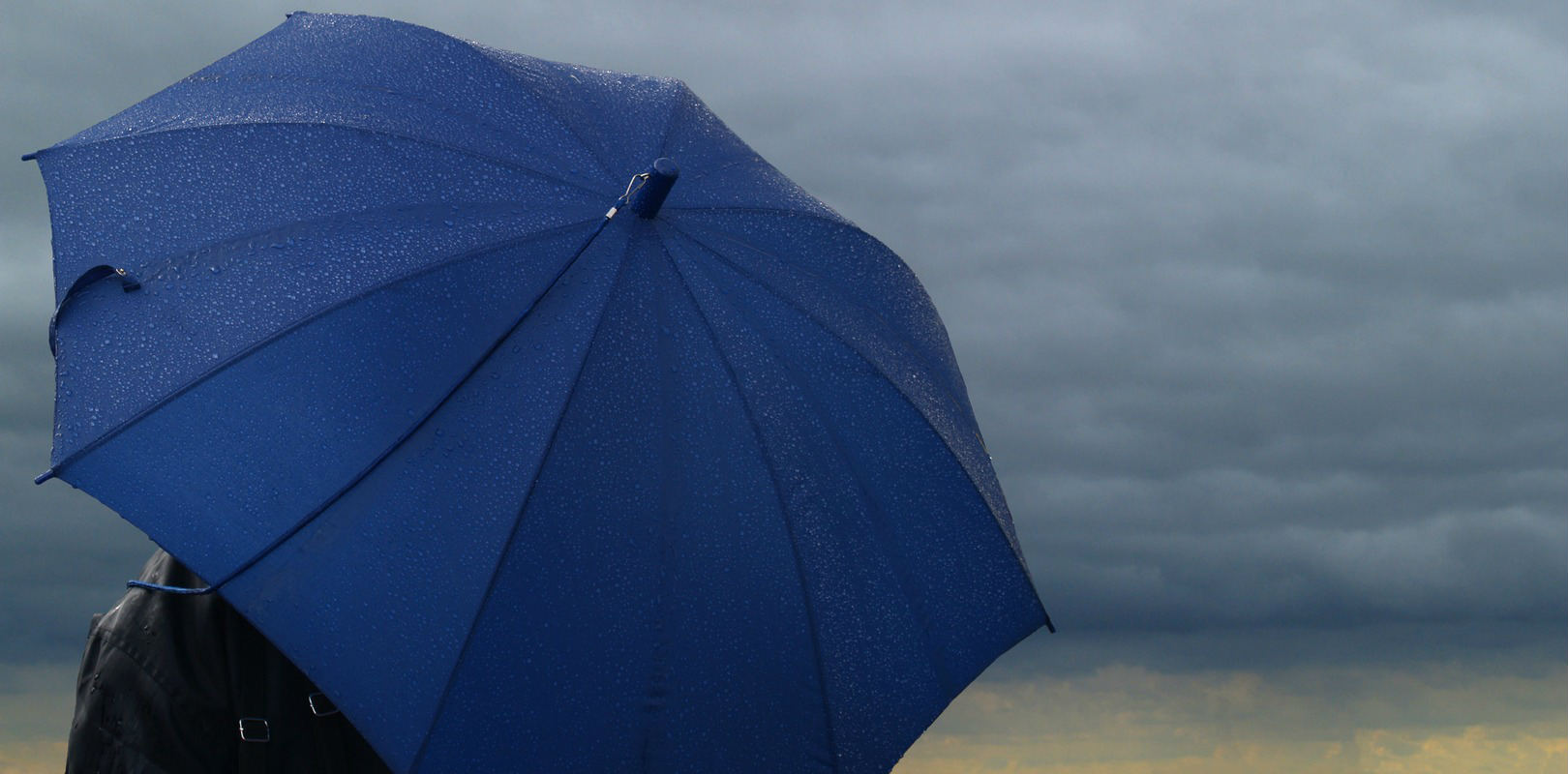Umbrella representing business and legal protection